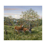 Whitetails under the Apple Tree Giclee Print by Jeff Tift