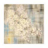 White Cherry Blossom III Giclee Print by li bo