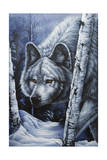 White Wolf Giclee Print by Jenny Newland