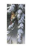 Winter Light 2 Impression giclée par Wilhelm Goebel