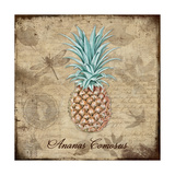 Ananas Comosus Giclee Print by Tina Lavoie