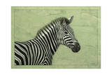 Zebra Giclee Print by James W. Johnson