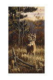 Autumn Whitetail Giclee Print by Wilhelm Goebel