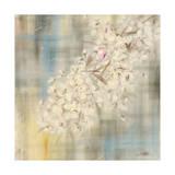 White Cherry Blossom II Giclee Print by li bo