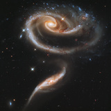 "A ""Rose"" Made of Galaxies Highlights Hubble's 21st Anniversary Photographic Print"