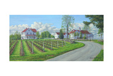 A New Season-Winery Giclee Print by Bruce Dumas