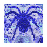 Blue Spider Giclee Print by Teofilo Olivieri