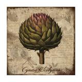 Cynara Scolymus Giclee Print by Tina Lavoie