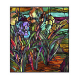 Candy Coated Irises Giclee Print by Mindy Sommers