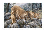 Cat Family Giclee Print by Jeff Tift