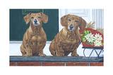 Christmas Dogs Reproduction procédé giclée par Bruce Dumas