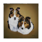 Collies 1 Giclee Print by Jenny Newland