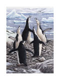 Chorus Chinstrap Penguins Giclee Print by Jeremy Paul