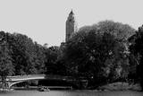 Central Park Bridge, NYC II Photographic Print by Jeff Pica