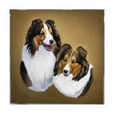 Collies 2 Giclee Print by Jenny Newland