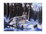 Big Timber Giclee Print by R.W. Hedge
