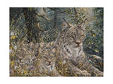 A Quiet Moment Giclee Print by Jeff Tift
