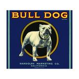 Bull Dog Brand Giclee Print
