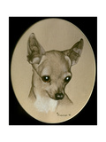 Dog Nine Giclee Print by Rusty Frentner