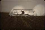 Crop Duster I Fotodruck