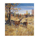 Colors of Autumn Giclee Print by Jeff Tift