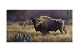 Bison and Magpies Giclee Print by Wilhelm Goebel