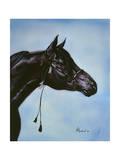 Black Arabian Giclee Print by Jenny Newland