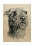 Dog One Giclee Print by Rusty Frentner