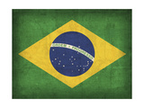Brazil Giclee Print by David Bowman
