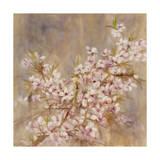 Cherry Blossom I Impressão giclée por li bo