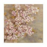 Fleurs de cerisier II Reproduction procédé giclée par li bo
