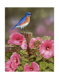 Bluebird with Hibiscus Giclee Print by William Vanderdasson