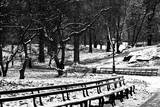Central Park Snow Photographic Print by Jeff Pica