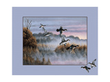 Ducks in Flight 2 Giclee Print by Wilhelm Goebel