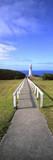 Cape Otway Photographic Print by Wayne Bradbury