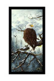 Eagle Rest Giclee Print by Jeff Tift