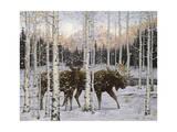 Crépuscule en forêt Impression giclée par Jeff Tift