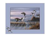Ducks in Flight 1 Giclee Print by Wilhelm Goebel