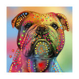 Bulldog Giclee Print by Mark Ashkenazi