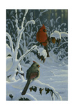 Cardinals and Brambles Giclee Print by Wilhelm Goebel