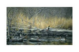 Early Morning Mallards Giclee Print by Jeff Tift