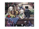 Five Puppies Giclee Print by Jenny Newland