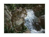 Danger in Paradise Giclee Print by Jenny Newland
