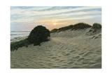 Dune Walk Giclee Print by Bruce Dumas