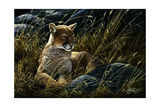 Cougar in the Grass Giclee Print by Wilhelm Goebel