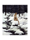 Cougar Giclee Print by Jeff Tift