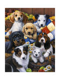 Country Bumpkin Puppies Giclee Print by Jenny Newland