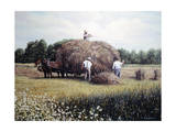 Haying time 1 Giclee Print by Kevin Dodds