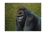 Gorilla with a Hedge Giclee Print by James W. Johnson