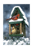 Cardinals and Birdhouse in Snow Giclee Print by William Vanderdasson